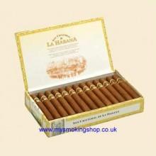 San Cristobal La Punta Box of 25 Cuban Cigars